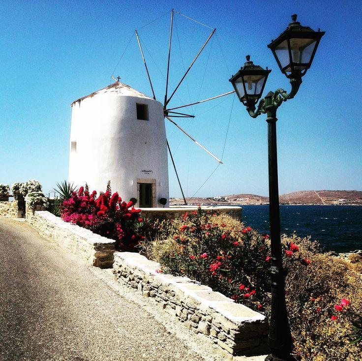 arikia today..... 🔆 ____________________ #parosadventures #paros #greece #parikia #island #windmill #flowers #sea #white #blue #holidays #explore #discovergreece #bay #streetlamp #trekking #trekkingtour #walking #aegean #summer2017