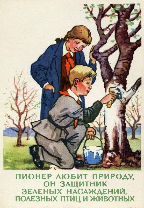 """Каждый раз утираю слезу умиления, глядя на эти открытки """"ЗАКОНЫ ЮНЫХ ПИОНЕРОВ"""" Комплект из 12-ти открыток. (""""Изогиз"""", 1960 год, художники: В.Талашенко,…"""