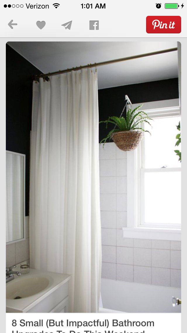 Hang shower curtain from ceiling to add more height to the room. Live plants hanging in the showe add a nice touch
