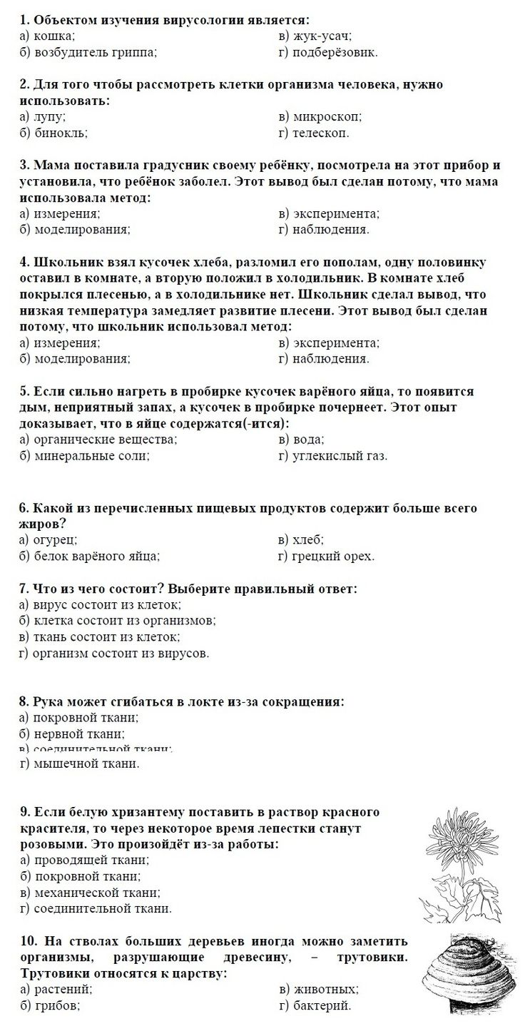 New millennium english 10 класс extensive reading просмотр задания