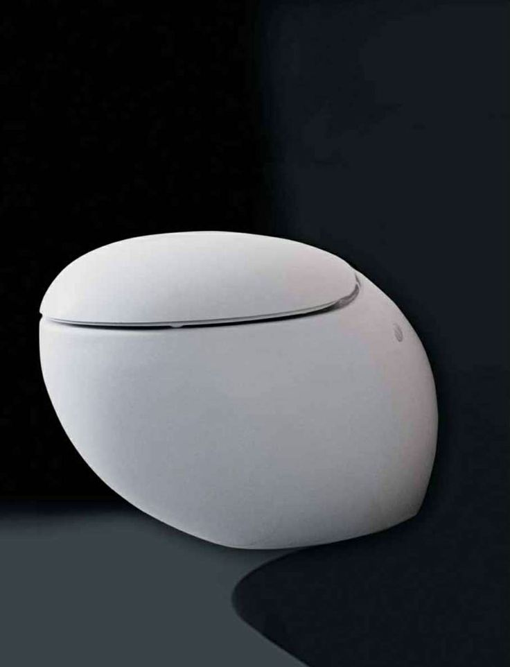 It S The Egg Shaped Toilet Designed By Stefano Giovannoni