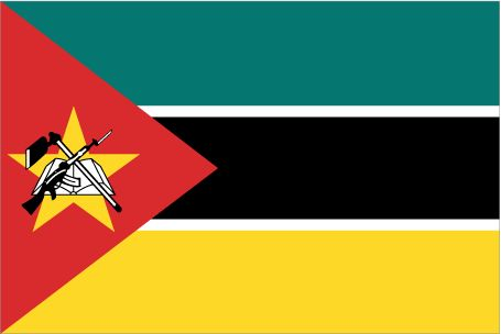 Flag of Mozambique🔹🔹💥FLAGS OF THE WORLD : More Pins Like This At FOSTERGINGER @ Pinterest 💥🔹🔹