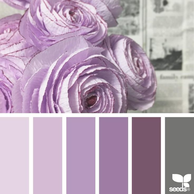 Flora Tones 94 best Purple Interiors images