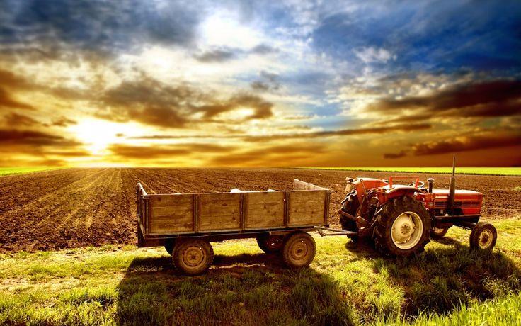 EL CAMPO ya es sujeto de crédito, porque ya mejoraron las condiciones macroeconómicas del país, asegura José Francisco Dovalina Lara, director de Agro Negocios de BanBajío.