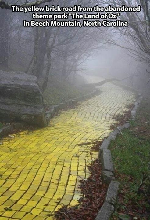 "The yellow brick road from the abandoned theme park ""The Land of Oz"" in Beech Mountain, North Carolina"