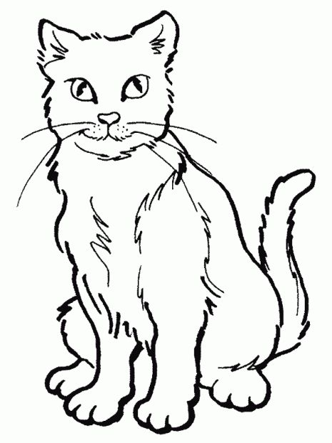 Gato para colorear. | Kitty projects | Pinterest | Cat coloring page ...