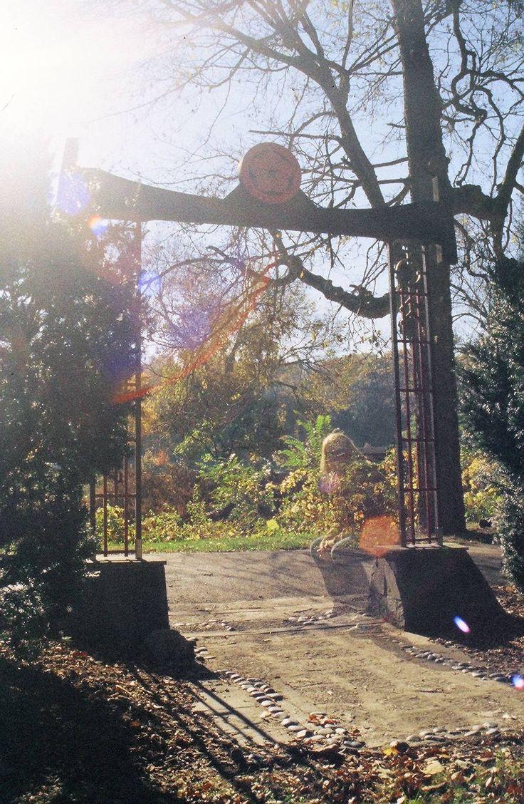 Under the Japanese Arch — orangebarn13 · Lomography
