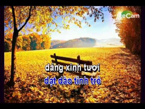 Việt Nam quê hương tôi karaoke midi