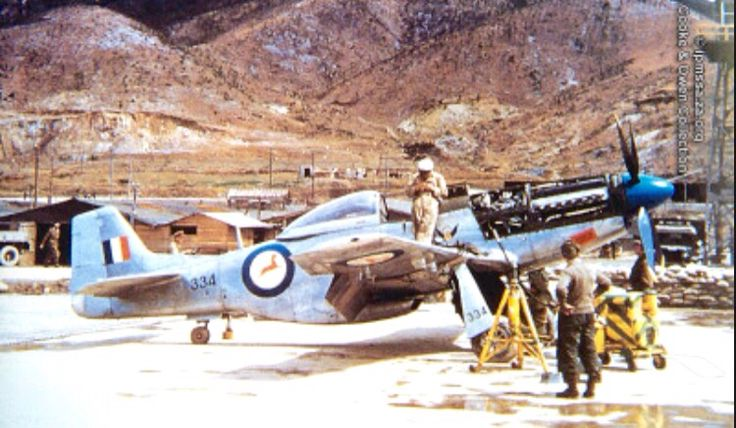 Maintenance crews perform work on a South African Air Force P-51 Mustang.