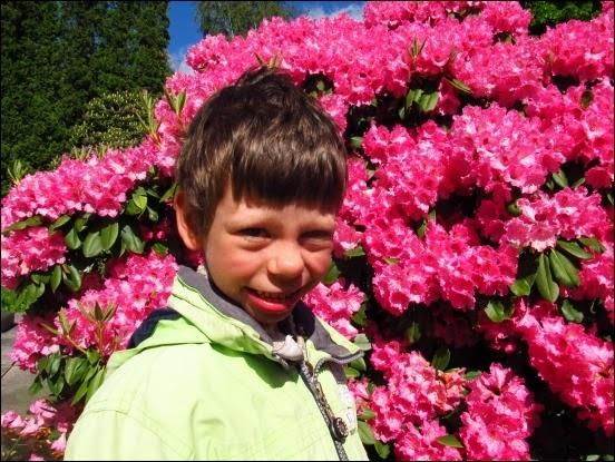 Mezi loužemi a rododendrony - červen 2013 – Bartolomějův blog (Mujblog.info v3.1)