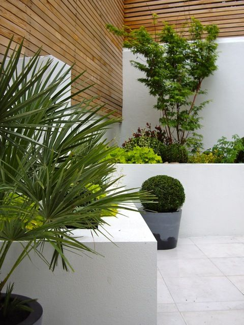 17 best images about contemporary designs on pinterest for Garden design north london