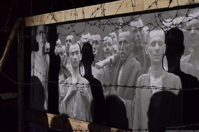 Голые мужчины принесли в жертву животное у ворот концлагеря Освенцим http://kleinburd.ru/news/golye-muzhchiny-prinesli-v-zhertvu-zhivotnoe-u-vorot-konclagerya-osvencim/