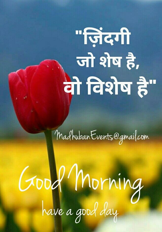 Daily quote सुप्रभात Inspirational quote Good morningquote Quote in hindi Hindi quote