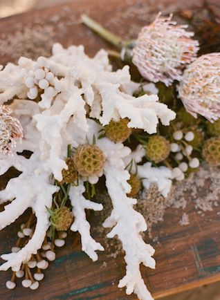 Coral | Laura Murray Photography | see more on: http://burnettsboards.com/2015/01/salt-earth-malibu-beach-wedding/