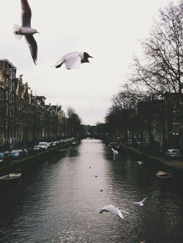 Amsterdam. Photo Adrian Zorzano