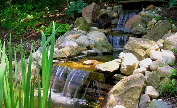 36 best images about nw landscaping on pinterest gardens for Water garden construction