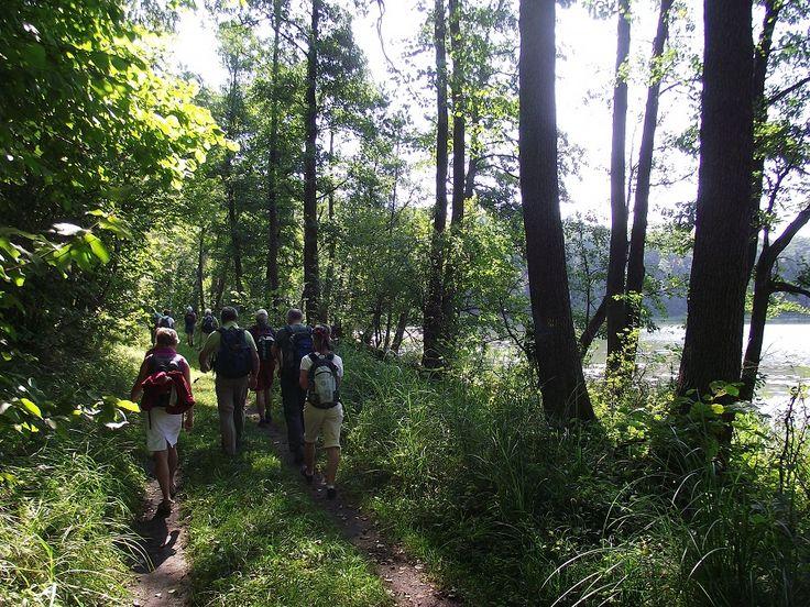 Spacer w Mazurski Parku Krajobrazowym.  www.it.mragowo.pl
