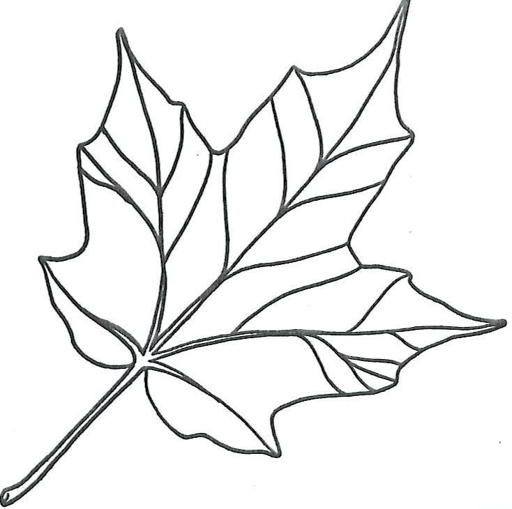 Maple Fall Autumn Printable Leaf Template Pdf | Leaf ...