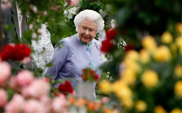 It's not too late to get tickets for @The_RHS Chelsea Flower Show! Find out more: http://www.telegraph.co.uk/gardening/chelseaflowershow/11492220/How-to-get-RHS-Chelsea-Flower-Show-tickets.html…