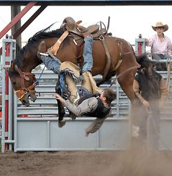 Awesome shot! #rodeo #cowboy #bronco