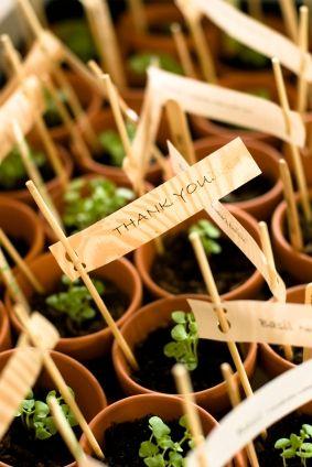 Regali di nozze da piantare