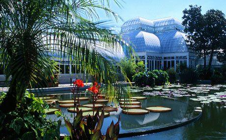 Botanical Garden New York, America