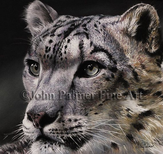 A Snow leopard in moonlight Snow leopard painting, snow leopard print, Fine art giclee print from my original pastel painting. via Etsy