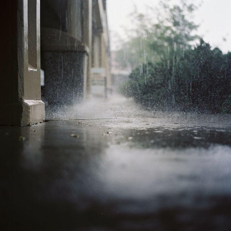 in the rain. Yashica-mat-124, film. photo by Kris Jackson.