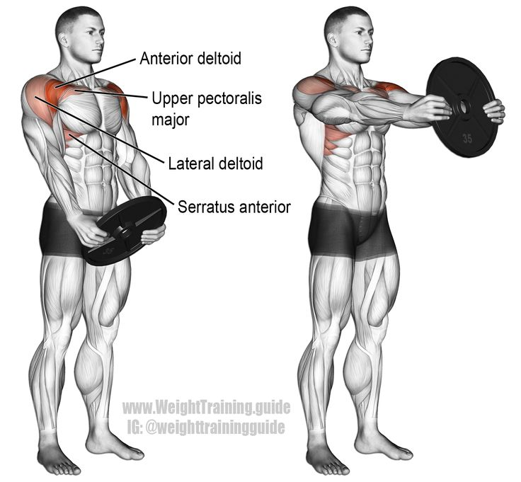 The plate front raise is an auxiliary shoulder exercise that targets your anterior deltoid. Using a heavy weight will significantly challenge your core.