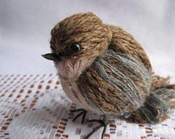 Pássaro 6