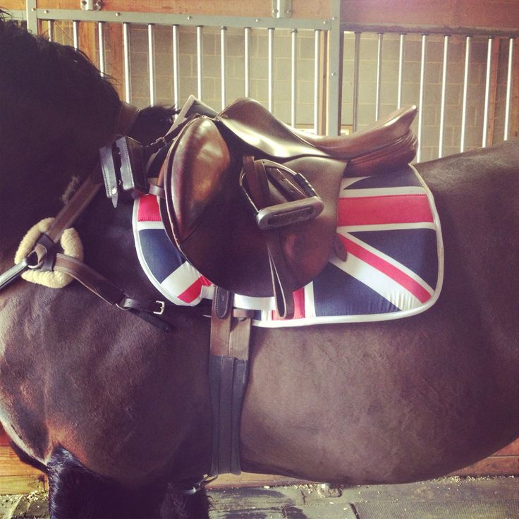 "geekinminiature:  Used our favourite new saddle pad today and got asked if ""I was a British?"" ;)"