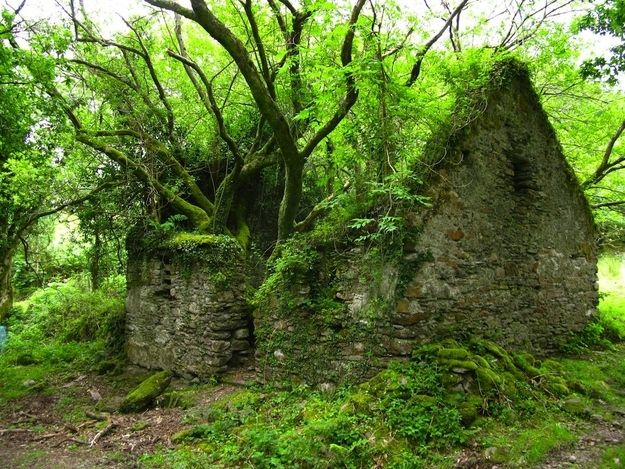 The Kerry Way walking path between Sneem and Kenmare in Ireland | The 33 Most Beautiful Abandoned Places In The World