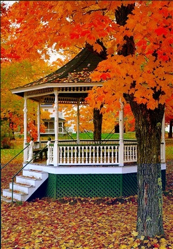 Beautiful Autumn, this looks similar to the bandstand in our little town square (which is really a circle:)) beautiful.