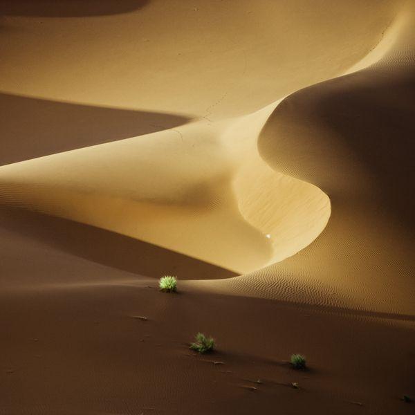 Namib Desert Dune-Scape Landscape Photographs | Life is Mysterious