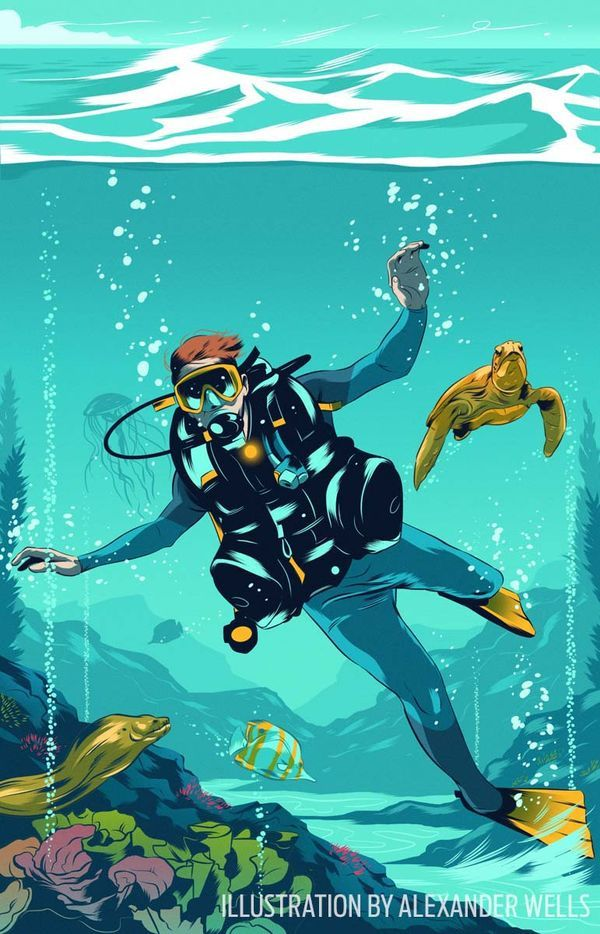 45 best scuba diving training tips images on pinterest - Dive training magazine ...