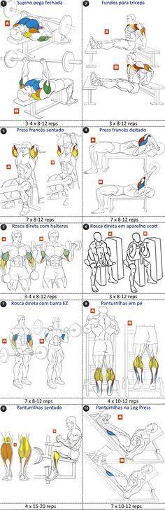 programa treino FST-7 tríceps bíceps e panturrilhas