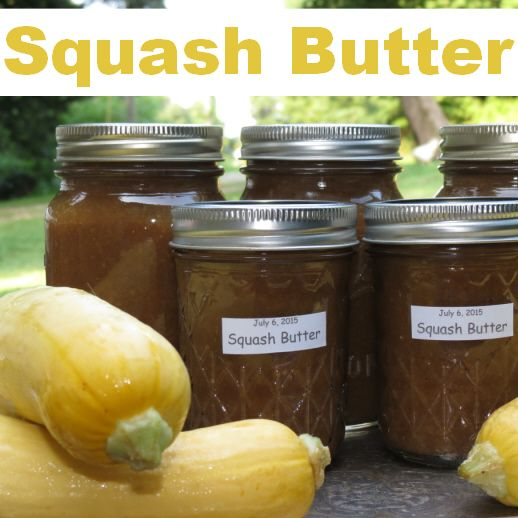 Do You Have Mountains Of Yellow Squash?                                                                                                                                                                                 More