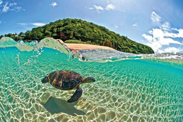 Resultado de imagen para hawai