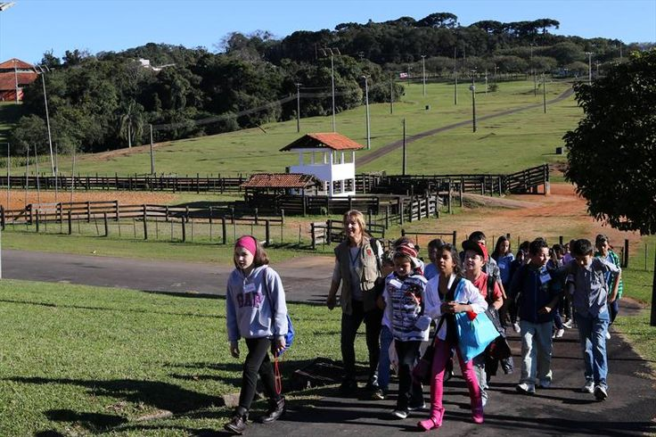 Maratona Infantil e Juvenil da Sustentabilidade, no parque dos Tropeiros bairro CIC, Curitiba, 02/08/2014 Foto:Cesar Brustolin/SMCS