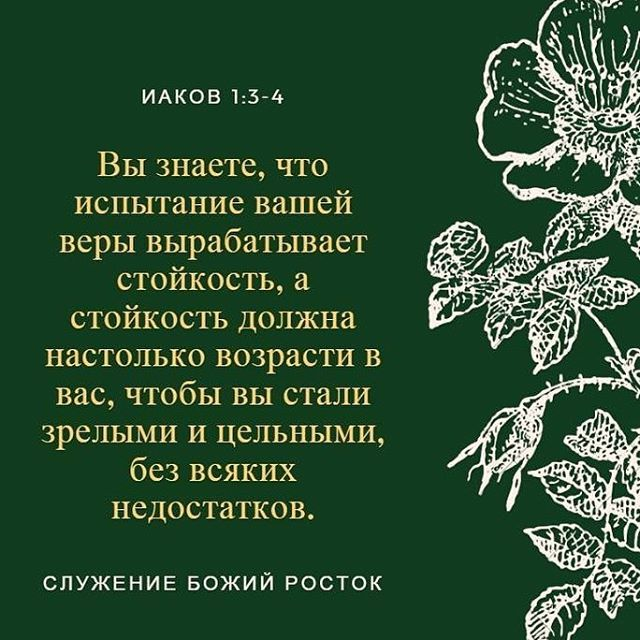 Стихи про терпение и понимание