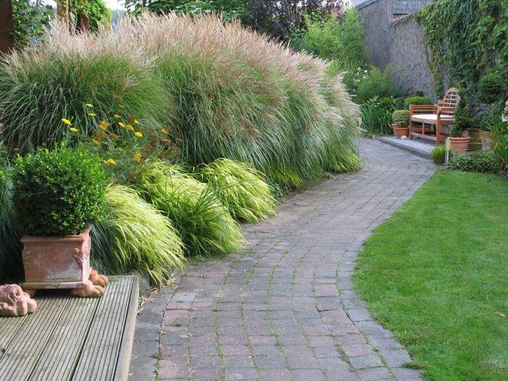 best 25+ gräser für den garten ideas on pinterest, Gartengerate ideen