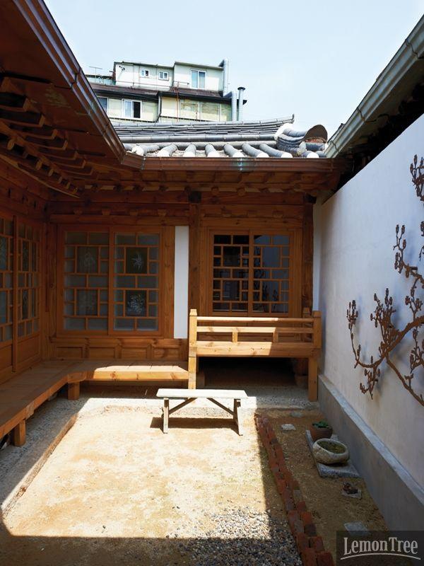 한국어 교수 로버트 파우치의 어락당| Daum라이프