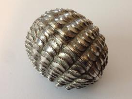 Very RAre Victorian Naturalistic Silver Nutmeg Grater from Lafite Fine Silver