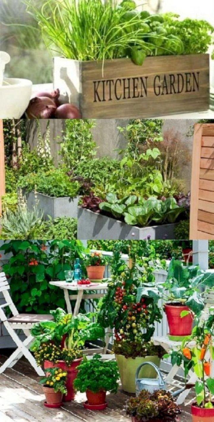 Beautiful Vegetable Garden Ideas Growing Vegetables Container Gardening Kitchen Garden