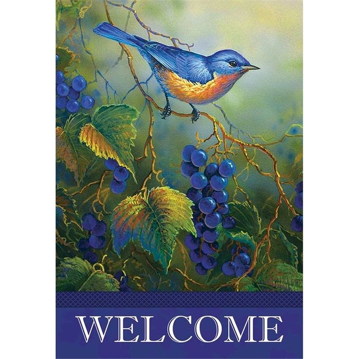 The Vineyard Bluebird Flag is printed, standard size, and looks great hanging off a cabin porch.