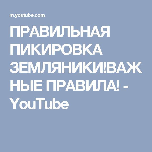 ПРАВИЛЬНАЯ ПИКИРОВКА ЗЕМЛЯНИКИ!ВАЖНЫЕ ПРАВИЛА! - YouTube