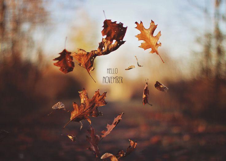 !¡ Hello November!:
