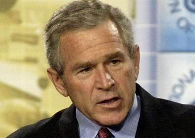 bush dynasty essay Amazoncom: family of secrets: the bush dynasty, america's invisible government, and the hidden history of the last fifty years (9781608190065): russ baker: books.