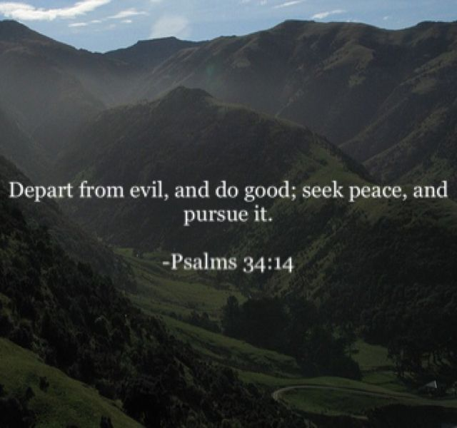 Depart from evil, and do good; seek peace, and pursue it.  -Psalms 34:14