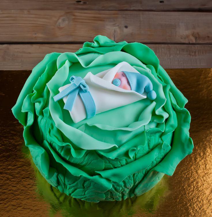Waar komen de kinderen vandaag? #bakerpraatjes #fabel Maar levert mooie babyshower taarten op!